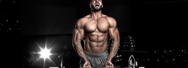 Steroids For The Body